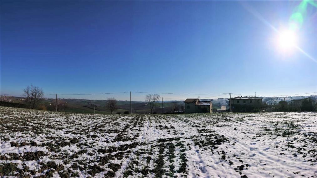 Terre roveresche - terreno in vendita
