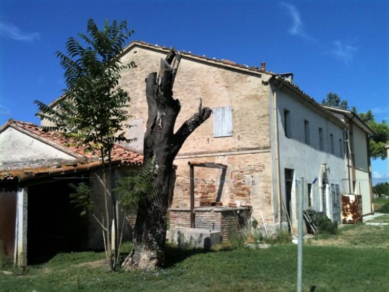 Fano - zona falcineto - rustico casolare cascina in vendita