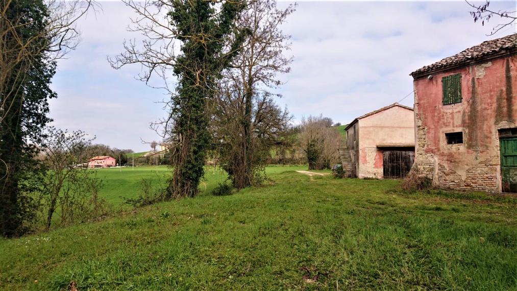 Fano - zona carignano - rustico casolare cascina in vendita