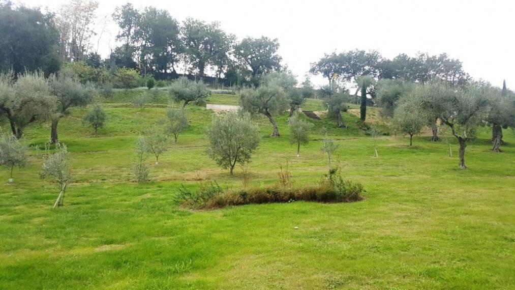 Fano - zona montegiove - terreno in vendita