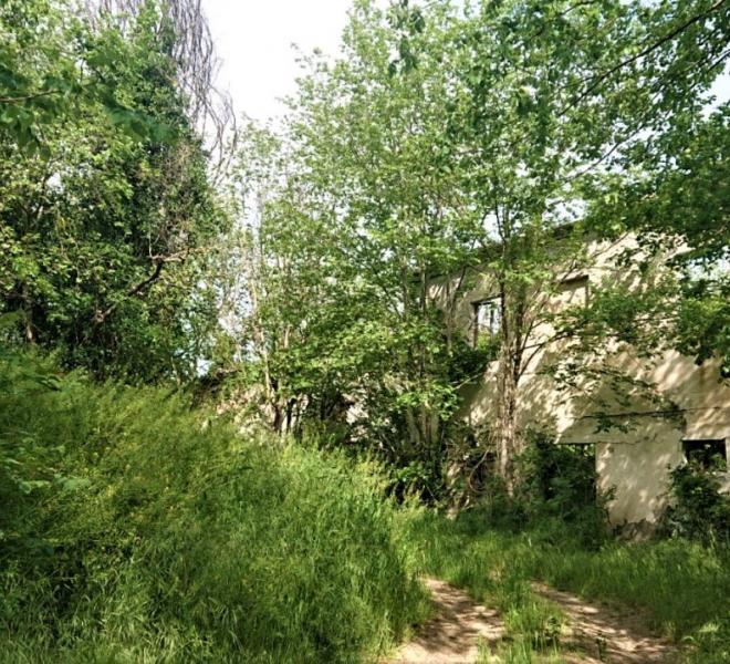 Cartoceto - zona - rustico casolare cascina in vendita