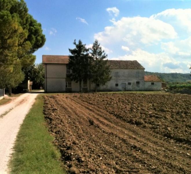Fano - zona bellocchi - rustico casolare cascina in vendita
