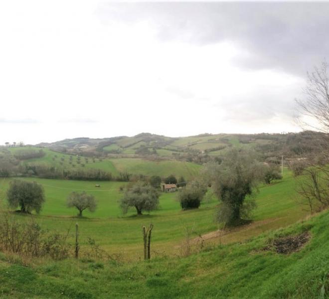 Fano - zona carignano - terreno in vendita