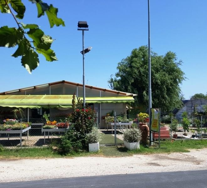 Fano - zona stadio-san lazzaro - azienda agricola in vendita